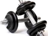 Mon, 24SEPT12 – Shoulders, Calves &Cardio